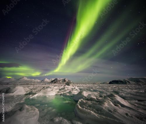 Foto auf Gartenposter Nordlicht Beautiful Northern Lights over the Arctic frozen fjord