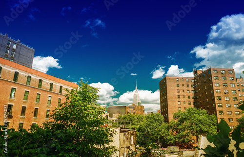 Stunning summer view of Manhattan Buildings from High Line Park. Poster