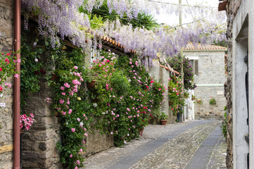 Plakat Narrow street of flowers