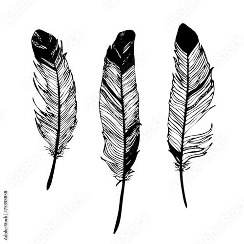 piora-czarno-bialy-rysunek-graficzny