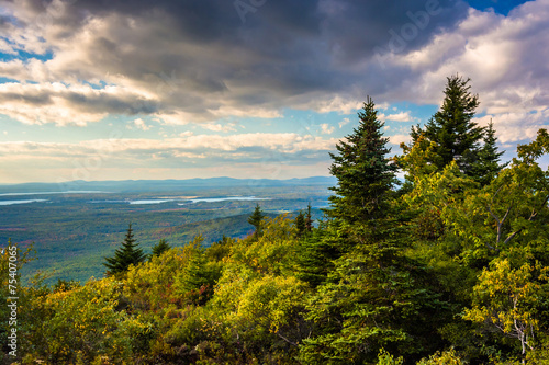 Fotografie, Obraz  View from Blue Hill Overlook in Acadia National Park, Maine.