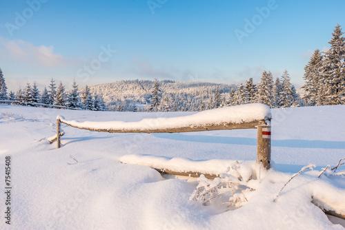 Fototapeta Zima w Beskidach obraz