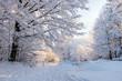 Piękna zima w polskich górach - Beskidy