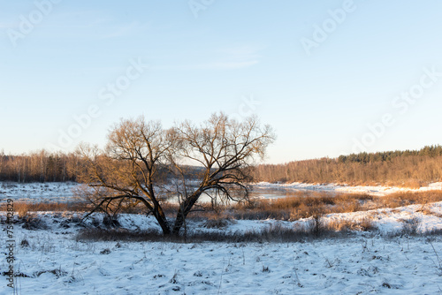 Foto op Aluminium Lichtblauw beautiful snowy winter landscape
