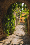 Fototapeta Uliczki - Old streets of greenery a medieval Tuscan town.