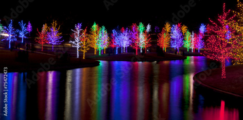 Fotomural Trees tightly wrapped in LED lights for the Christmas holidays r