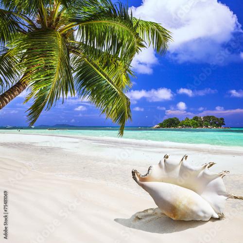 fototapeta na szkło wakacje na tropikalnej wyspie