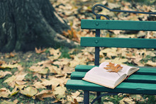 Open Book With Leaf Lying On T...