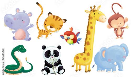 animales salvajes bebe