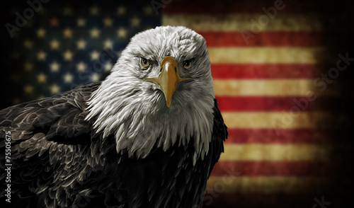 Fotografie, Tablou  American Bald Eagle on Grunge Flag