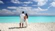 Young beautiful newlyweds on white sandy beach