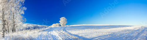 In de dag Bleke violet rural winter landscape a panorama with the blue sky, a field and