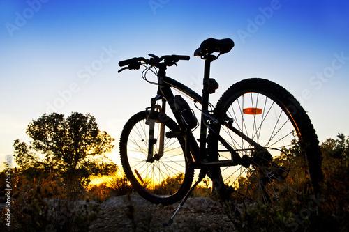 Foto op Plexiglas Fietsen bicicleta de montaña en el paisaje