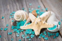 Close-up Of Seashells On Old Wooden Board.
