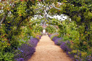 FototapetaColourful English summer flower garden with a path under archway