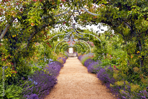 Papiers peints Jardin Colourful English summer flower garden with a path under archway
