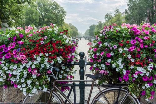rower-i-kwiaty-nad-kanalem-w-amsterdamie