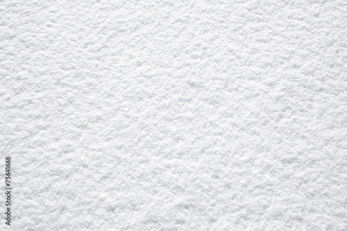 perfect fresh white snow background structure Canvas