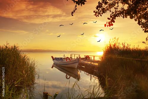 Deurstickers Zwavel geel la barca entre las plantas de la orillas del estanque