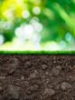 Soil with grass