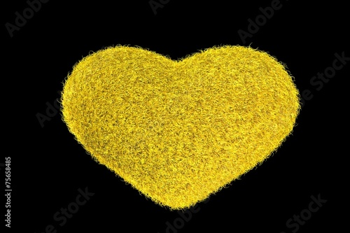Photo  Yellow Fuzzy Heart