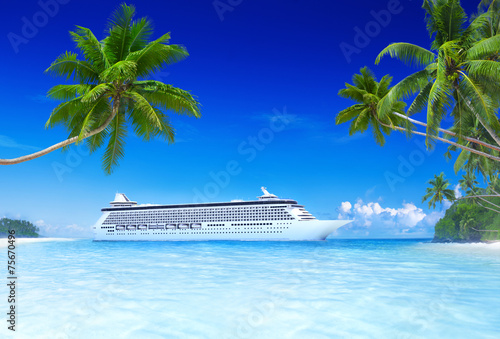 Staande foto Strand Cruise and beach with palm tree
