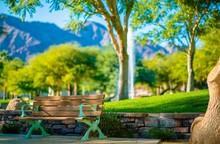 La Quinta Park Bench