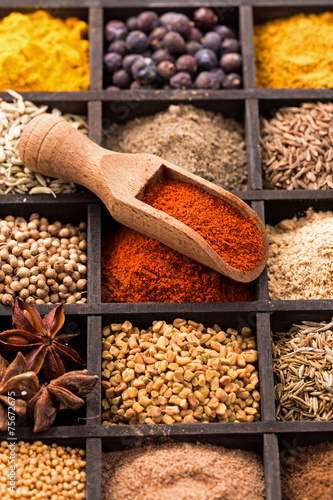 Foto op Canvas Kruiden Various spices in box and shovel closeup
