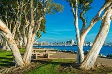 San Diego Waterfront Park
