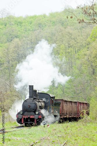 Fototapeta steam freight train (126.014), Resavica, Serbia obraz na płótnie