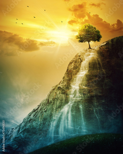 Poster de jardin Orange Waterfall tree