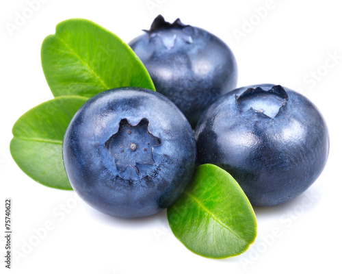 Papel de parede blueberries