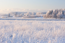 Rural Winter Landscape With Wh...
