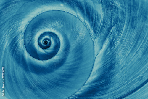 Papiers peints Spirale Blue snail spiral