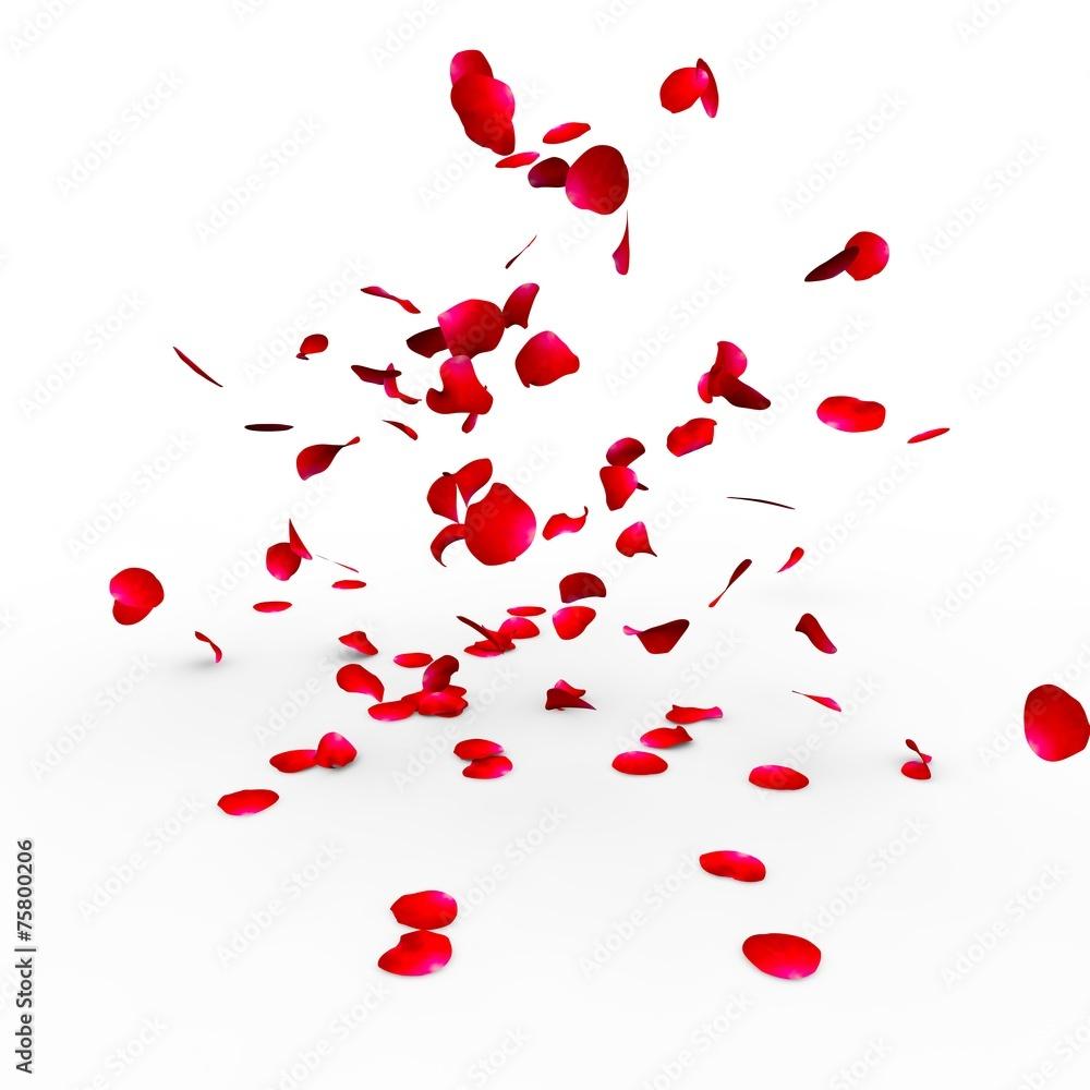 Fototapeta Rose petals falling on a surface