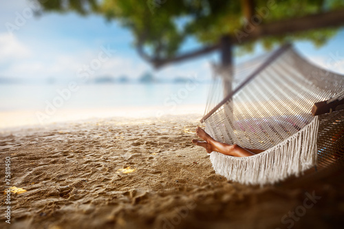 Photo  Hammock