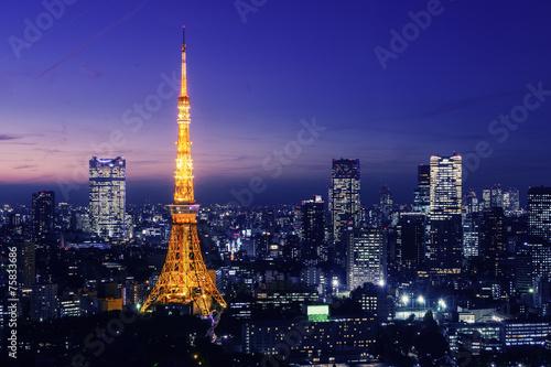 Foto op Canvas Tokyo Tokyo Tower