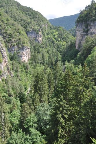 Acrylic Prints Forest San Romedio, Wallfahrtsort in Südtirol