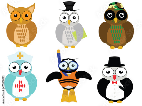 Poster Uilen cartoon career owl