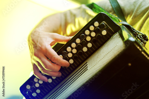 Fotomural Image of musician playing on accordion closeup