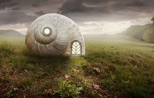 Surreal Artistic Image With A ...