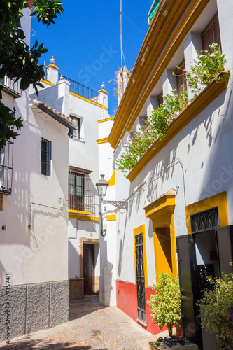 Fototapety, obrazy: beautiful streets full of typical color of the Andalusian city o
