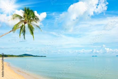Spoed Foto op Canvas Caraïben Tropical beach