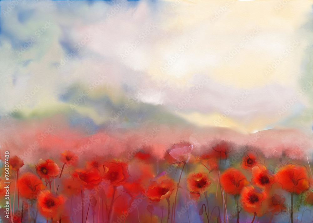 Fototapety, obrazy: Red poppy flowers filed  watercolor painting