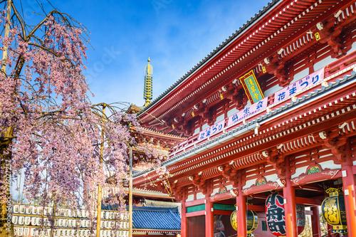 Spoed Foto op Canvas Bedehuis Asakusa Temple in Springtime