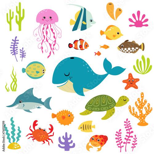Fototapeta premium Ładny podwodny świat
