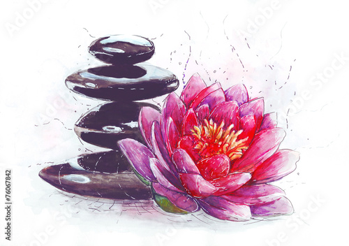 lotus and stones