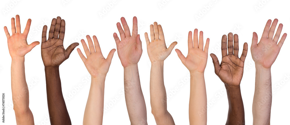 Fototapeta Many hands up isolated on white background