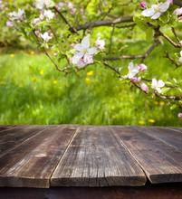 Empty Table Against Spring Gar...