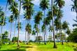 Coast Coconut Getaway